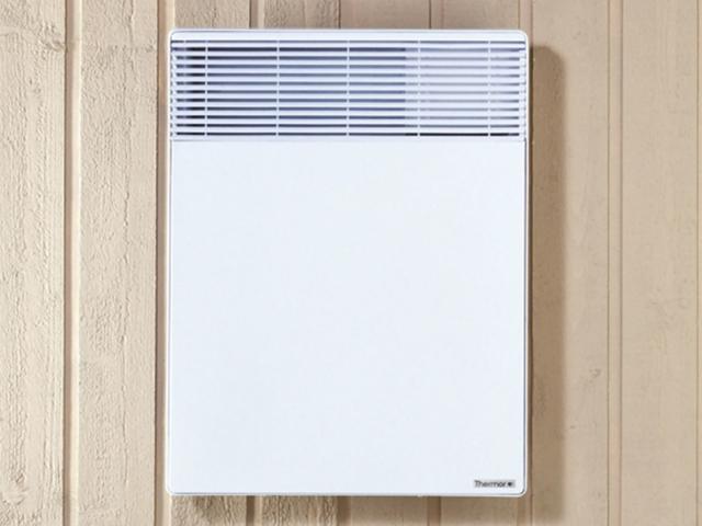Image de radiateur_electrique_convecteur_variation_horizontal_blanc_thermor.jpg